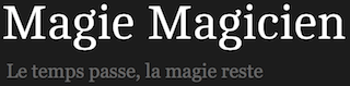 Logo magiemagicien – Elvine Animations