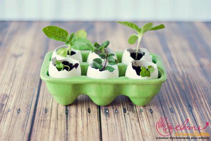 eggshell-seed-starters-3